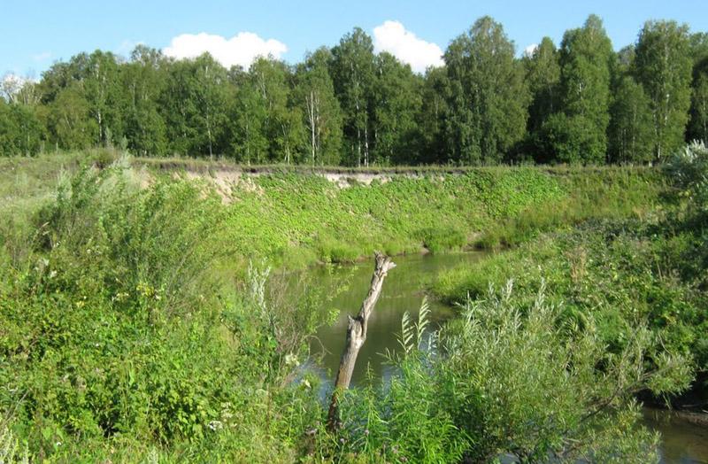 Поймы рек – места с традиционно высоким уровнем грунтовых вод
