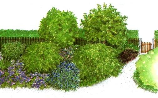После озеленением приусадебного участка