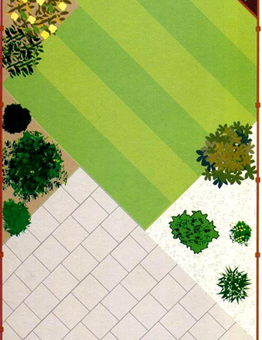 Планировка газона в саду